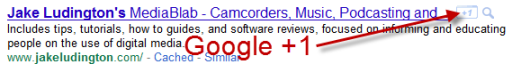 Google +1 in search results